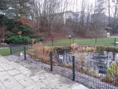 Der Zaun folgt der Rundung des Teichs